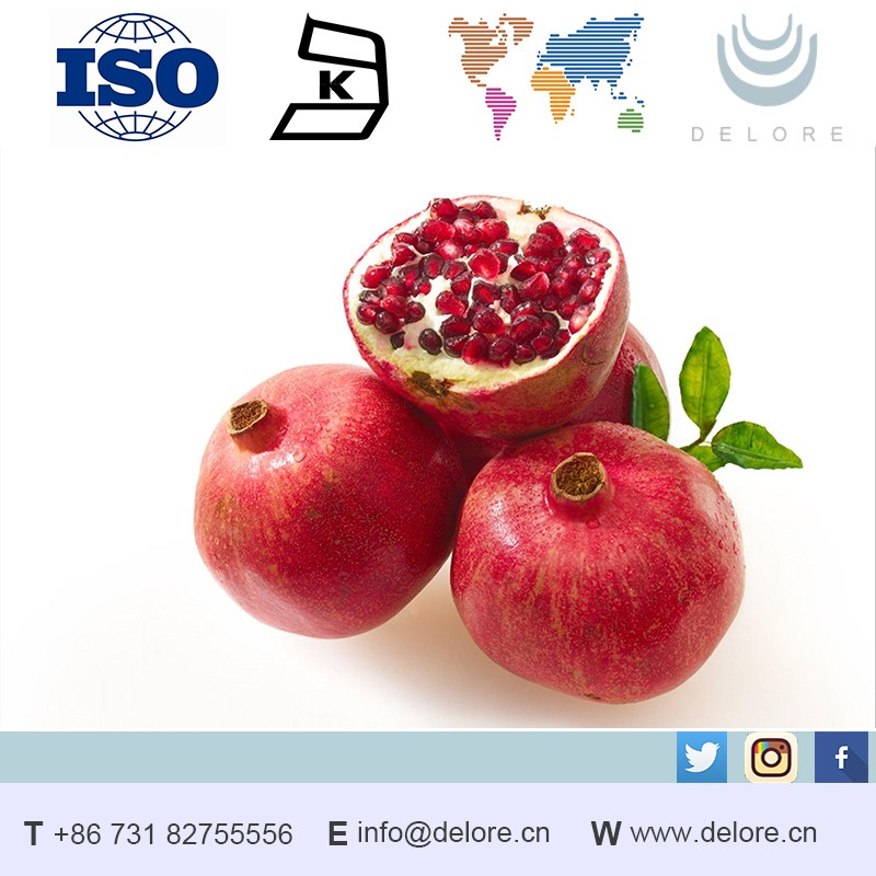 Natural pomegranate peel Extract polyphenol Powder 90% supplier