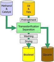 biodiesel machine price