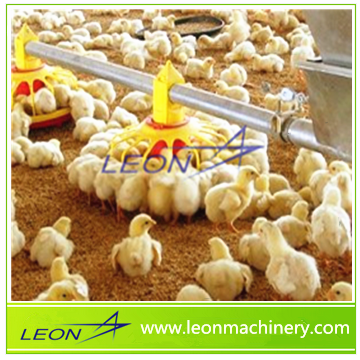 LEON Complete Broiler Chicken Poultry Control Shed Equipment for sale