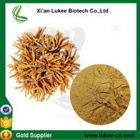 Hot sale high quality natural cordyceps sinensis extract powder /winter worm summer herb