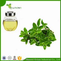 100% Pure Animal Feed Additives Wholesale Oregano Essential Oil with Anti-bacteria Effect