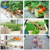 eco-friendly PP&UV drip irrigation system for vertical farming