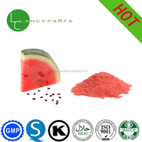 Chinese suppliers supply Watermelon natural fruit powder