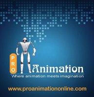 PRO Animation Web Designing