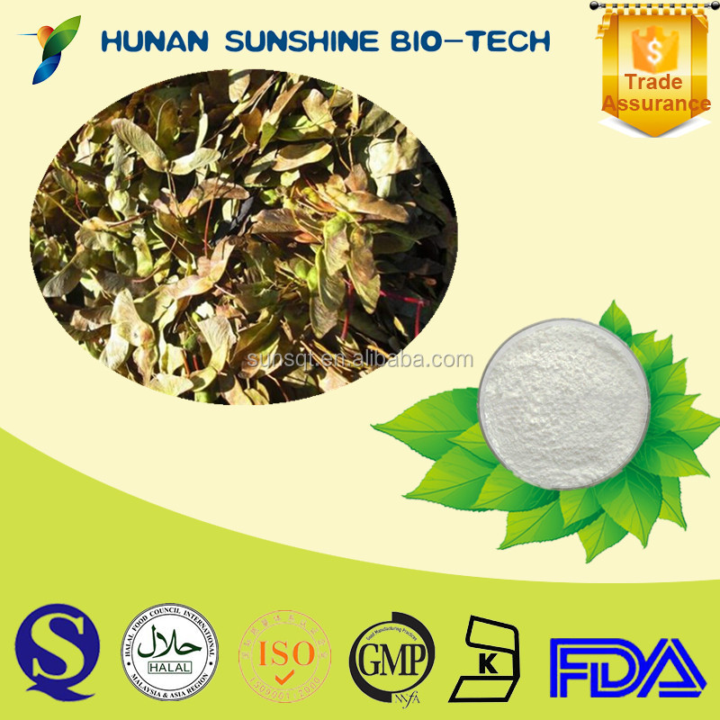 Favorable price of Acer truncatum extract powder 90% Nervonic acid