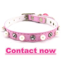 dog collars for sale L040810