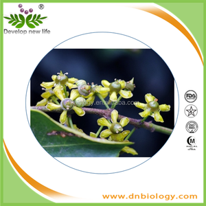 Herbal Extract Plant Extracts Suppliers And Manufacturers Alibaba