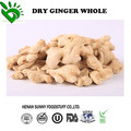 Supply High Quality Dehydrated Ginger Whole Factory Price