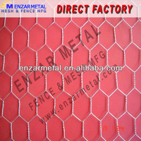 Small Bird Cage Wire Mesh -China Anping Direct Manufacture