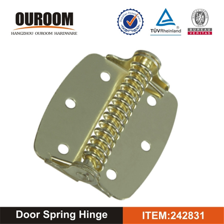 Practical OEM Technical Standard Competitive Price Auto Door Closer Hinge