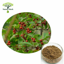 Manufacturer Offer Smilax Officinalis Root Extract/Hemidesmus Extract