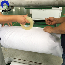 Pet sheet for blister film rolls thermoforming