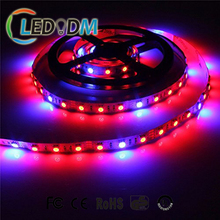 Full Spectrum LED Grow Light with Red Blue Aquarium LED Lighting