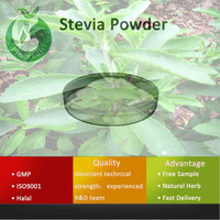 Professional Plant Extract Natural Stevia Powder