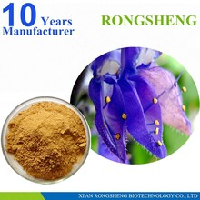 100% Natural Coleus Forskohlii Extract Powder