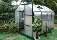 6.3X10FT well-design aluminum greenhouse for garden