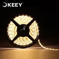 KEEY 2M/Roll 12W/M 60leds/M Zhongshan Factory Strip Light Led 5050 2700K 3000K QYR4-DD603W-2