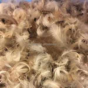 wholesale soft washed grey duck feather for sale