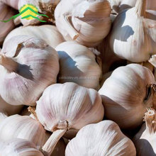 COLDVALLEY 2017 new crop planter wholesale fresh cheap natural garlic price Henan China origin