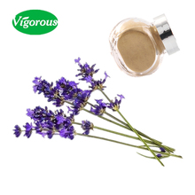 ISO factory best price pure natural lavender extract