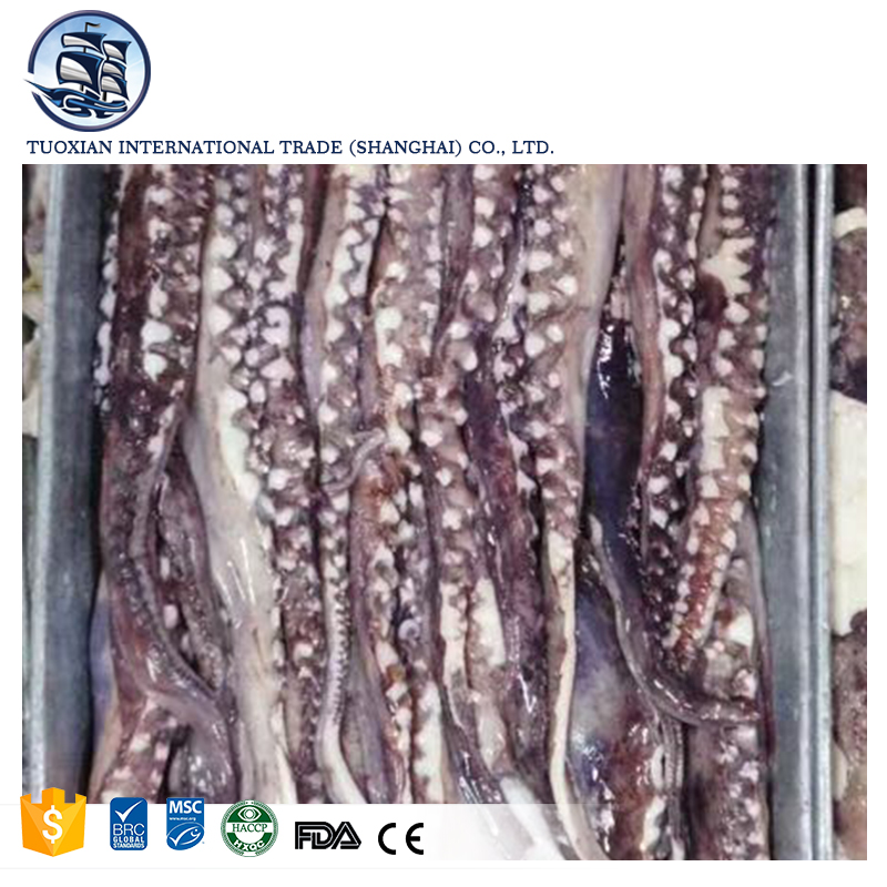 Frozen squid calamari with tentacles for sale