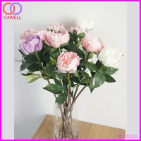 real natural peony wholesale preserved flower