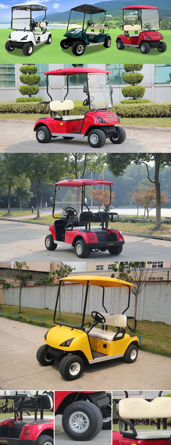Suitable prices electric golf car DG-C2 for sale with CE certificate from China