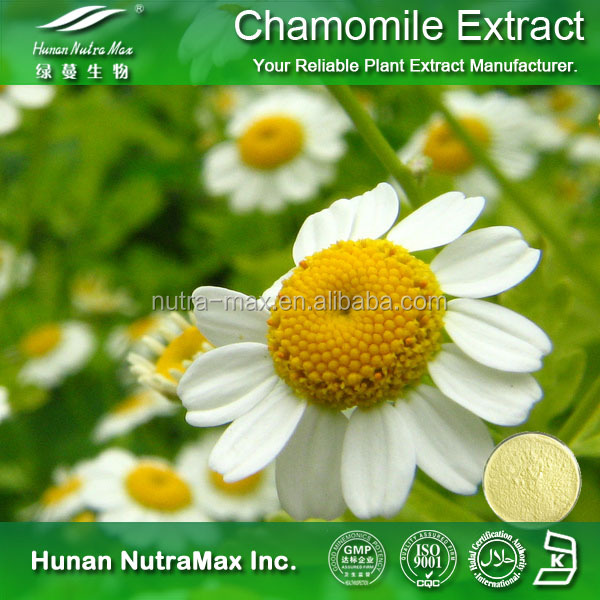 Natural Cosmetic Raw Material Chamomile Apigenin Extract Chamomile Extract Powder