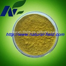 natural fruit extract mango seed extract 20:1