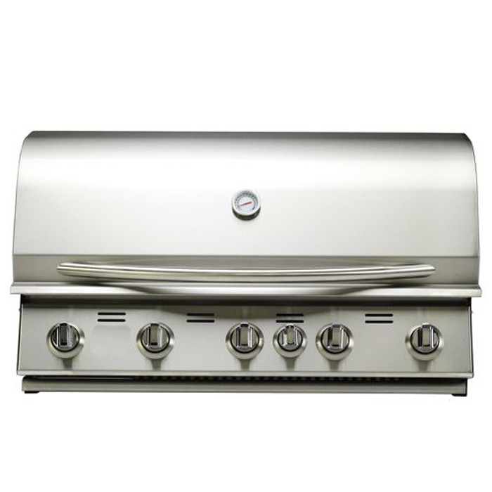 Portable 304 Stainless Steel Propane LP Gas Grills with 5 Burners Infrared Back Burner for BBQ Barbecue Cooking Appliance