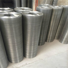 1/2 inch square hole ss welded wire mesh