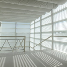 Interior Elegant Motorized Roller Shang-ri Window Shades