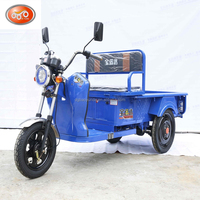 Shenzhen Factory Cargo Tricycle Cheap Electric Cargo Tricycle Used For 400KG Loading