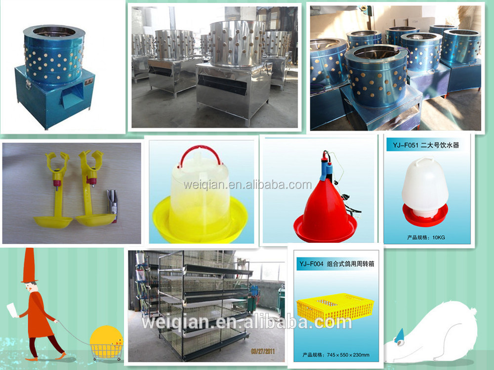best price WQ 48 eggs incuabtor with battery poultry incubator/egg incubator for sale