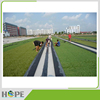 Artificial turf polyurethane pavement adhesive