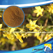 High Quality Forsythia Suspensa Extract (12:1)