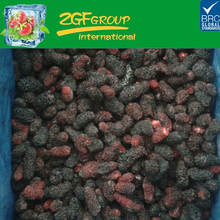 frozen healthy 100% pure fresh mulberry fruits vietnam frozen dried tida kim origin iqf natural used production red drag