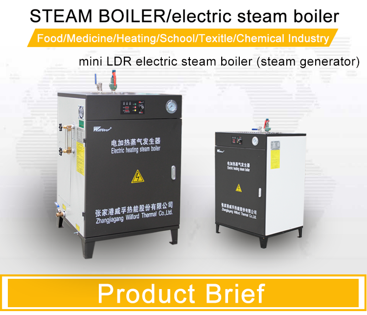 Electric heated SS drum MS body Portable Steam Generator