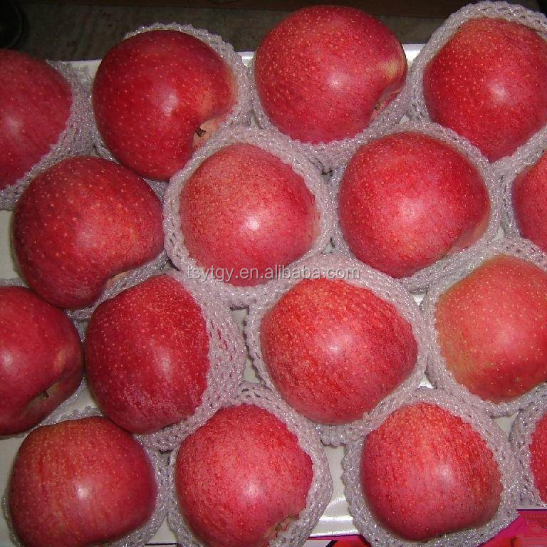 Hot sale Chinese apple fruit fresh Qinguan apple