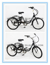 C-GW7015E electric vehicles for disabled /adult electric tricycle factory prices