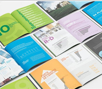Company DL Brochures printing