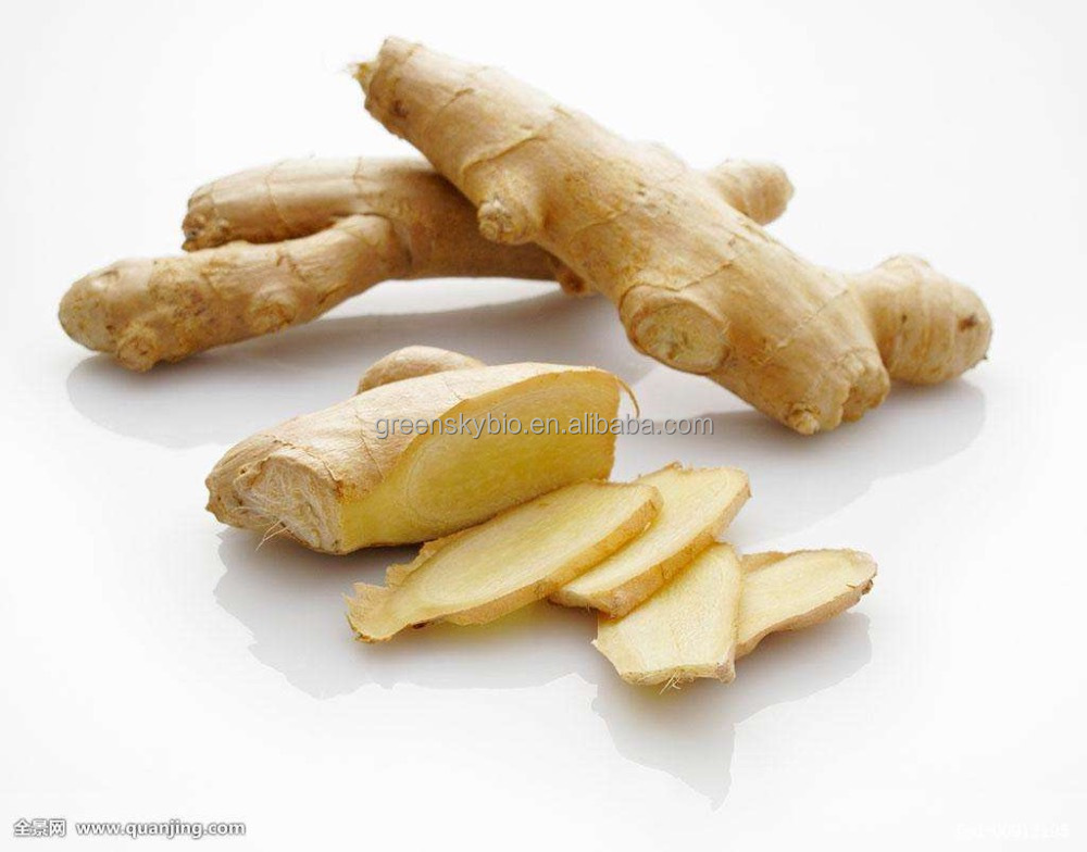 100% Natural and Factory Supply HPLC Test Dry Ginger Extract / Zingiber Officinale Root ( Rhizome) Extract Powder