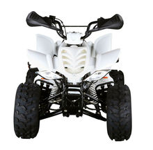 4 stroke quad 4 wheel 110cc ATV 125cc quad (FA-E125)