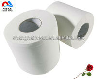 High Quality Bathroom Toilet Tissue Roll,Soft Toilet Paper Europe