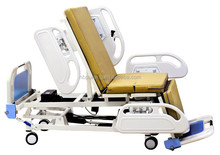 Multi-function electric bed DA-10
