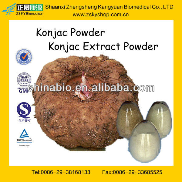 GMP Factory Supply Amorphophallus Konjac Root Powder