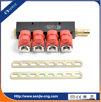 bigas injector cng/gas kit injecion/4cyl injector rail