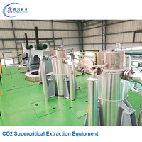 Efficient automatic supercritical stevia extraction equipment