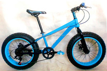 20 Inch Aluminum Frame Fat Tyre Snow Kick Mountain Bike for Kids Bicycle