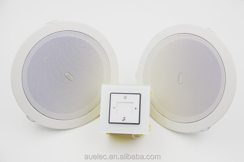 wifi smart house sound system with FM/TF mini card-MP3/WMA player